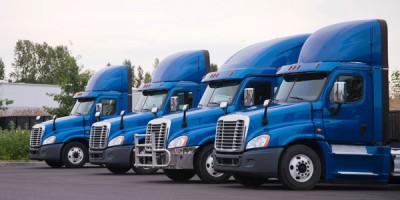 row of blue semi trucks