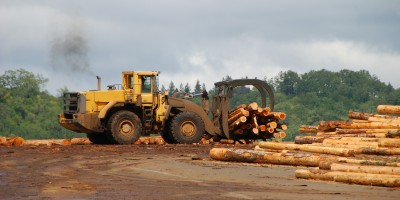 loader with logs
