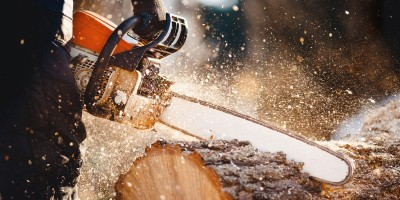 logger using chainsaw to cut log