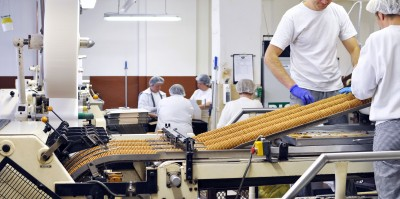 image of workers working in food manufacturing facility