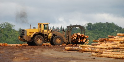 loader with load of logs next to pile of lumber