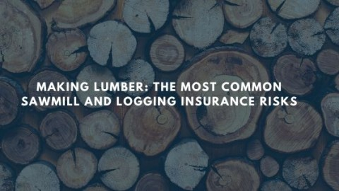 Making Lumber: The Most Common Sawmill and Logging Insurance Risks blog image with logs in background