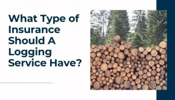 What Type of Insurance Should A Logging Service Have blog title image