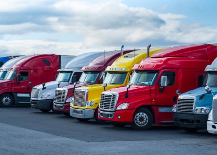 row of colorful semi trucks
